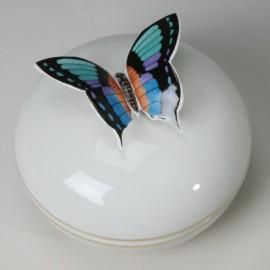Kugeldose Schmetterling