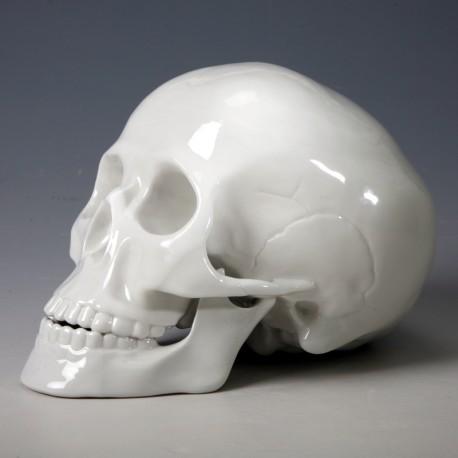 Totenkopf, Schädel